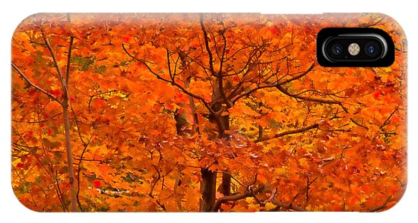 Autumn Color Splash IPhone Case