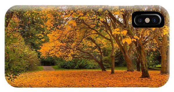 Autumn Colors I IPhone Case