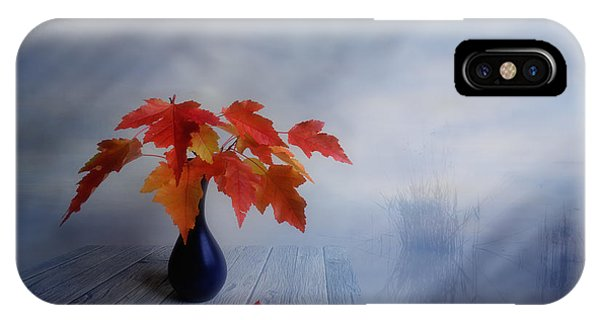 Leave iPhone Case - Autumn Colors by Veikko Suikkanen