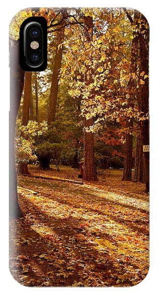 Autumn Country Lane Evening IPhone Case