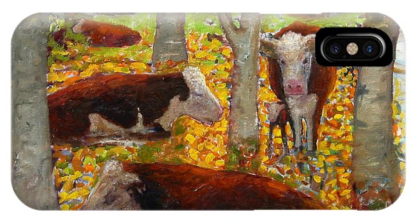Autumn Cows IPhone Case