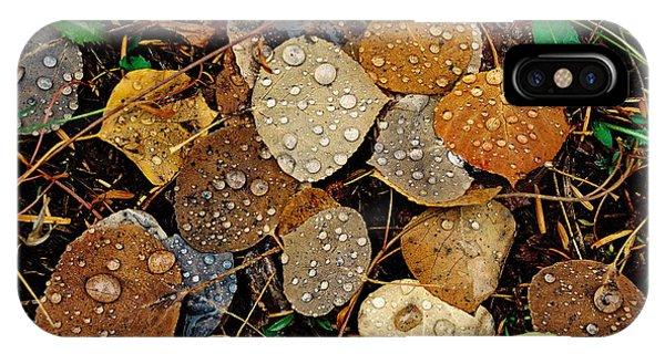 Autumn Dew IPhone Case