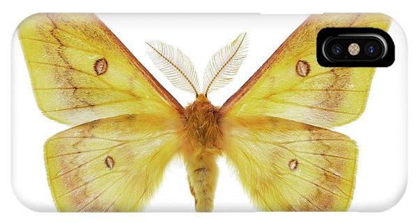 Autumn Emperor Moth IPhone Case