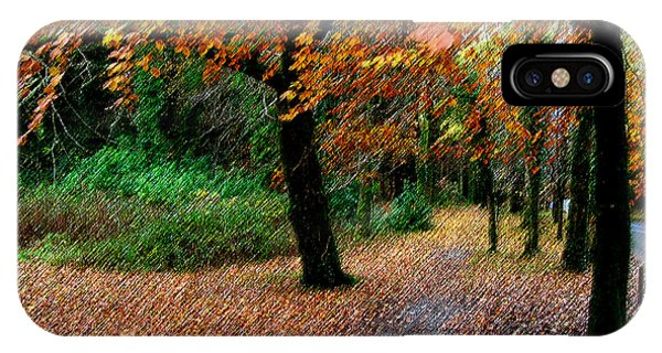 Autumn Entrance To Muckross House Killarney IPhone Case