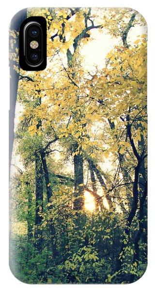 Autumn Evening IPhone Case
