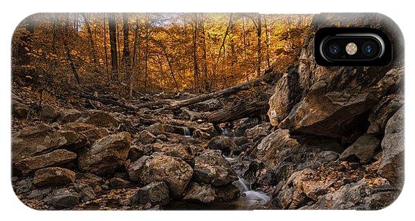Autumn Falls IPhone Case