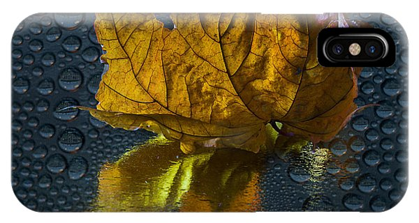 Autumn Fantasy 2 IPhone Case
