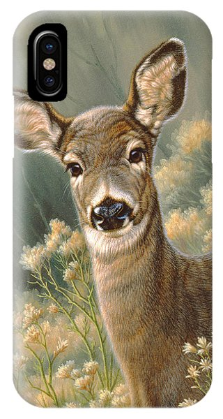 Deer iPhone Case - Autumn Fawn-blacktail by Paul Krapf