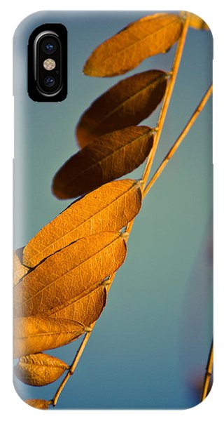 Autumn Feathers IPhone Case
