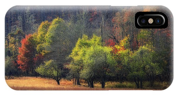 Autumn Field IPhone Case