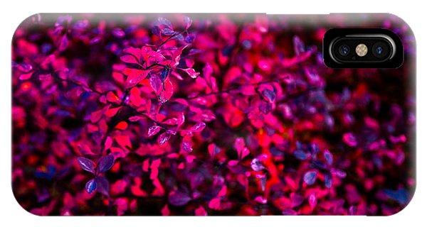 Violet Flame iPhone Case - Autumn Flames 1 by Alexander Senin