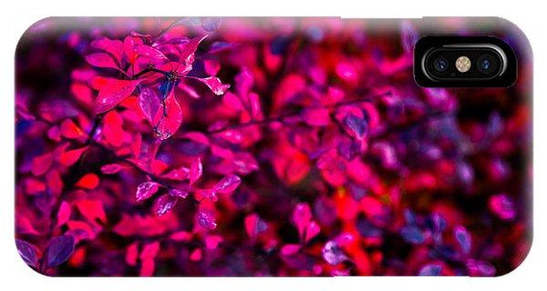 Violet Flame iPhone Case - Autumn Flames 1 - Square by Alexander Senin