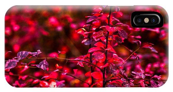 Violet Flame iPhone Case - Autumn Flames 10 - Square by Alexander Senin