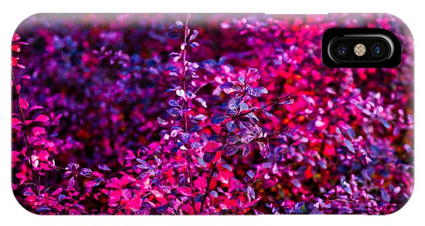Violet Flame iPhone Case - Autumn Flames 11 by Alexander Senin