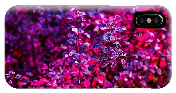 Violet Flame iPhone Case - Autumn Flames 11 - Square by Alexander Senin