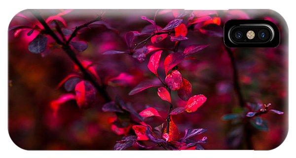 Violet Flame iPhone Case - Autumn Flames 12 by Alexander Senin