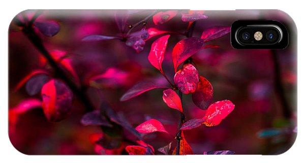 Violet Flame iPhone Case - Autumn Flames 12 - Square by Alexander Senin