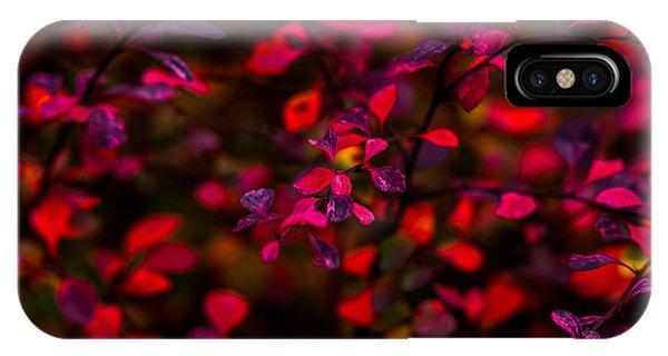 Violet Flame iPhone Case - Autumn Flames 2 by Alexander Senin