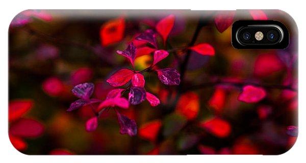 Violet Flame iPhone Case - Autumn Flames 2 - Square by Alexander Senin