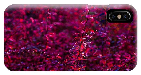 Violet Flame iPhone Case - Autumn Flames 3 by Alexander Senin