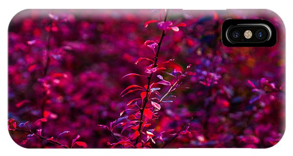 Violet Flame iPhone Case - Autumn Flames 3 - Square by Alexander Senin
