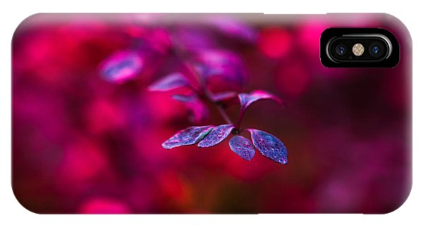 Violet Flame iPhone Case - Autumn Flames 5 by Alexander Senin