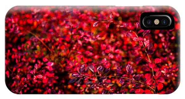 Violet Flame iPhone Case - Autumn Flames 6 by Alexander Senin