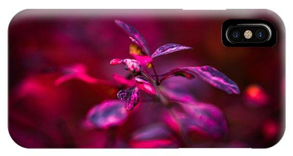 Violet Flame iPhone Case - Autumn Flames 7 - Square by Alexander Senin