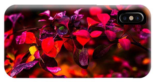 Violet Flame iPhone Case - Autumn Flames 8 - Square by Alexander Senin