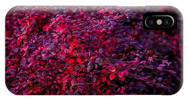 Violet Flame iPhone Case - Autumn Flames 9 by Alexander Senin