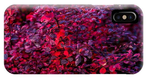 Violet Flame iPhone Case - Autumn Flames 9 - Square by Alexander Senin