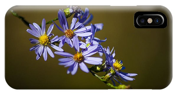 Fall Flowers iPhone Case - Autumn Floral by Wayne Moran