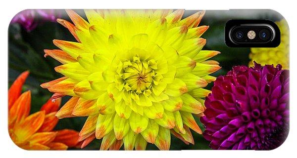 Autumn Flowers IPhone Case