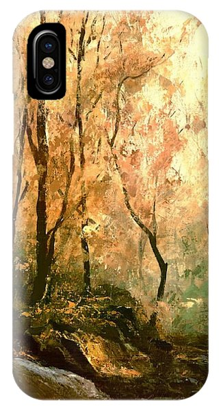 Autumn Forest Baltimore Maryland IPhone Case