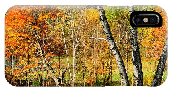 Autumn Forest Scene - Litchfield Hills IPhone Case