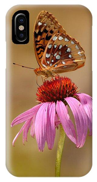 Autumn Fritillary Butterfly IPhone Case