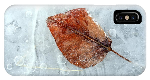 Ice iPhone X Case - Autumn Frozen by Mike  Dawson