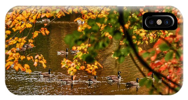 Autumn Geese Abstract Phone Case by Kathi Isserman