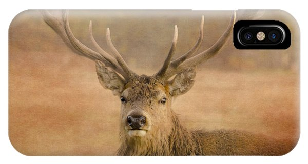 Magnificant Stag IPhone Case