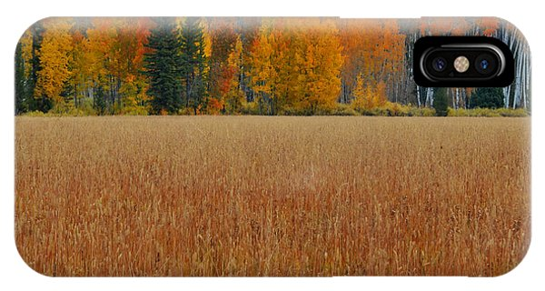 Autumn Golden Fields And Aspens Grand Teton National Park IPhone Case