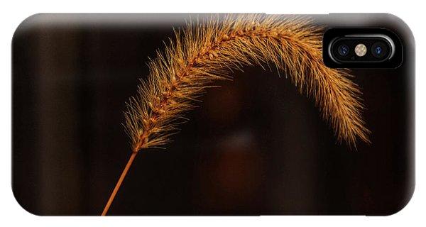 Autumn Grass Phone Case by Kathi Isserman