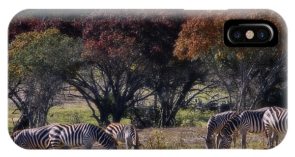 Fossil iPhone Case - Autumn Grazing by Joan Carroll