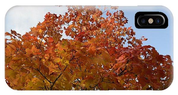 Autumn Harmony 1 IPhone Case