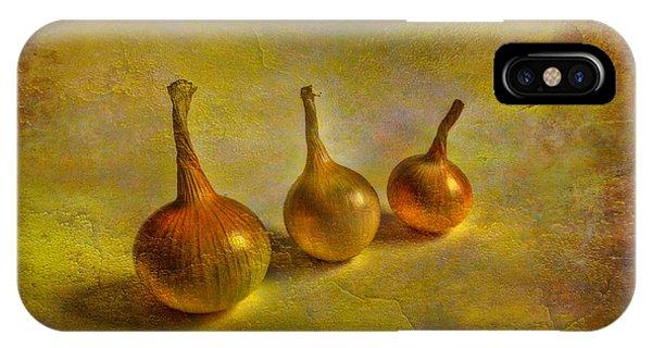 Golden Gardens iPhone Case - Autumn Harvest by Veikko Suikkanen