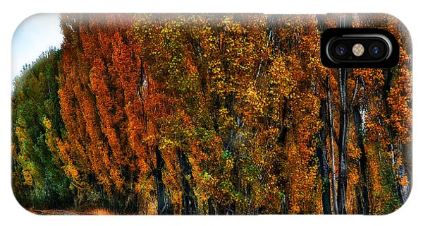 Autumn Impression IPhone Case