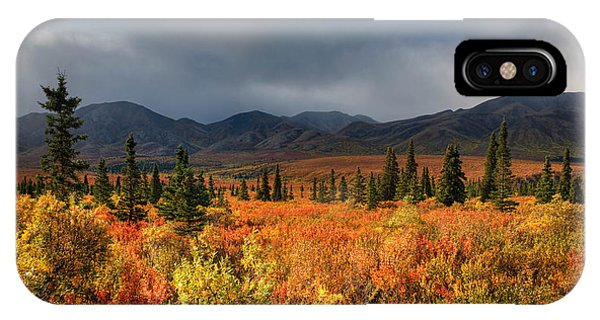 Autumn In Alaska IPhone Case
