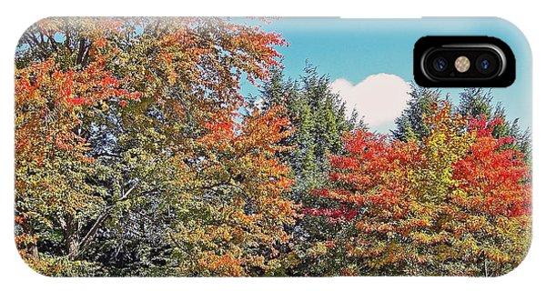 Ohio Autumn In Full Color IPhone Case