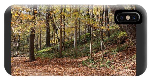 Autumn In Grant Park 4 IPhone Case