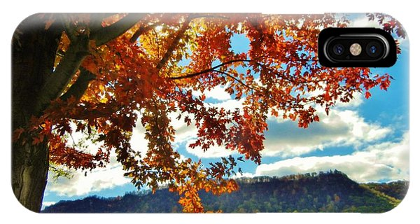 Autumn In Minnesota IPhone Case