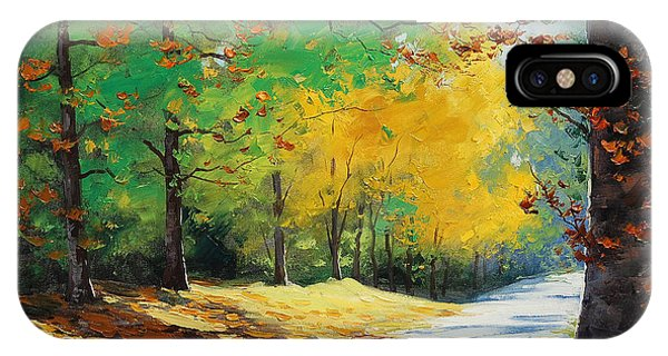 Amber iPhone Case - Autumn In Mt Wilson by Graham Gercken